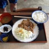 井田  「木瓜」